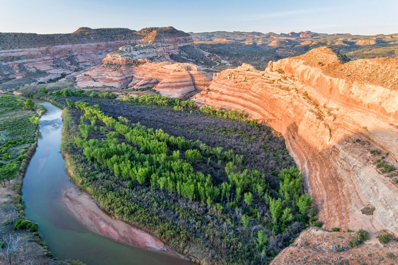 Trees grow along the banks of the Dolores River in Utah